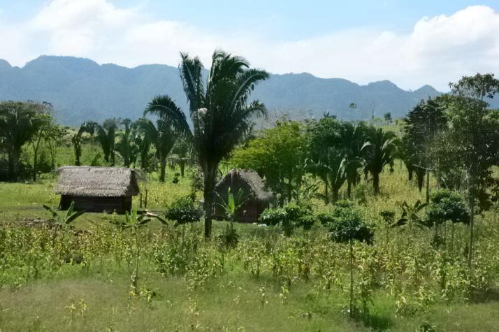 Guatemala1-8