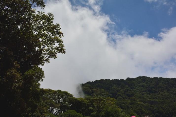 CostaRica2-20