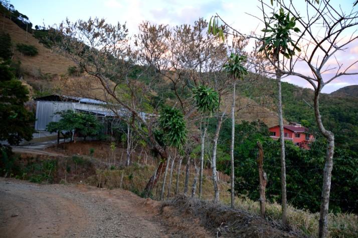 CostaRica2-6