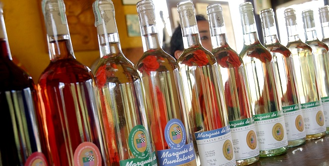 Vinos-del-terroir-small
