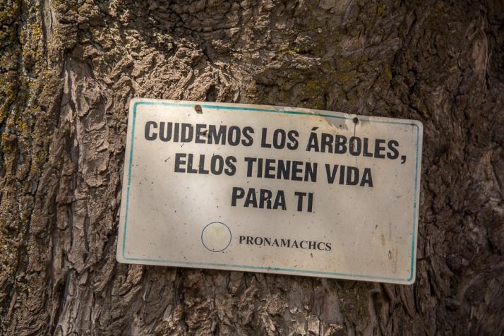 Peru_DSC_8086