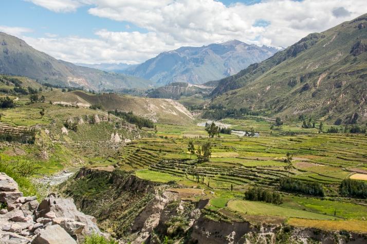 Peru_DSC_8108