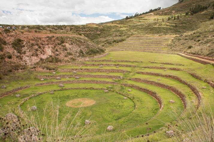 Peru_DSC_8226