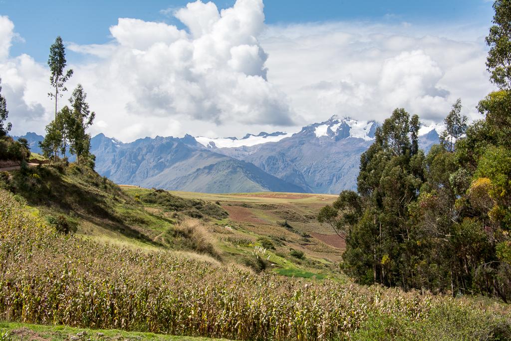 Peru_DSC_8276