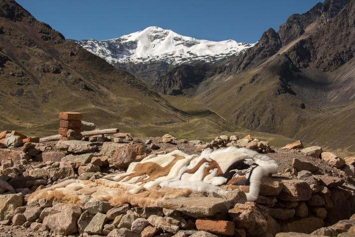 Peru_DSC_8467