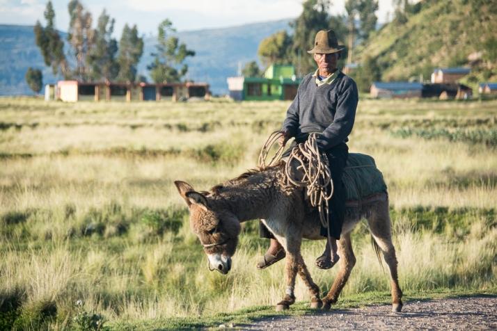 Peru_DSC_8591
