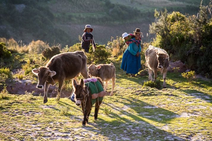 Peru_DSC_8597
